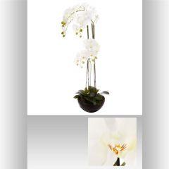 Orchidee pot ceramique 40 cm
