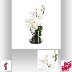 Composition orchidee vase verre 37 cm