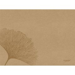 Set de table marron papier 40x30 cm Organic Duni (250 pièces)