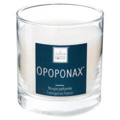 Bougie parfumée opoponax