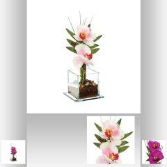 Composition orchidee vase verre 25 cm