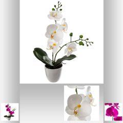 Orchidee 43 cm