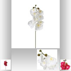 Tige d orchidee 108 cm