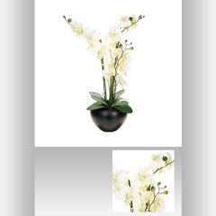 Composition orchidee vase ceramique 63 cm