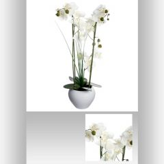 Orchidee pot ceramique 53 cm