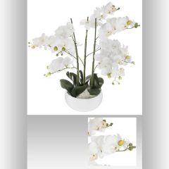 Orchidee pot ceramique 55 cm
