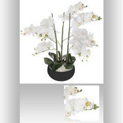 Orchidee pot ceramique 25 cm