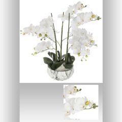 Orchidee pot ciment couleur marbre 25 cm