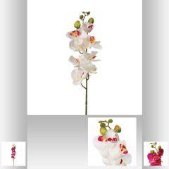 Tige d orchidee 86 cm