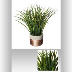 Plante verte pot ciment 40 cm