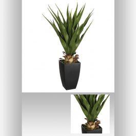 Agave pot rectangulaire 73 cm