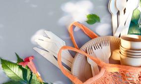Vaisselle biodégradable en bois